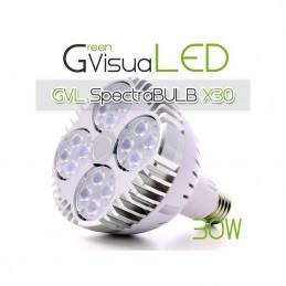 Ampoule horticole LED 30W...