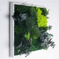 Tableau végétal stabilisé - MonJardinVertical.fr