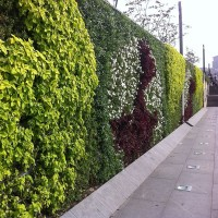 Jardin Vertical Extérieur Wall of Plants - MonJardinVertical.fr