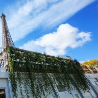 Flowall modules pour mur végétal - MonJardinVertical.fr