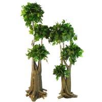 Plantes stabilisées - MonJardinVertical.fr